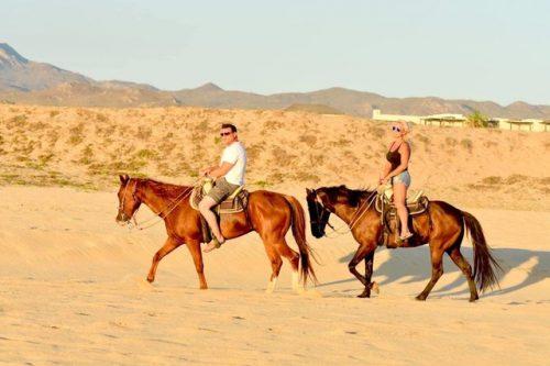 HorsesPicacho 3